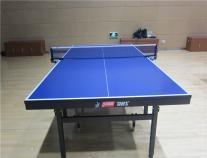 T1024红双喜整体折叠式乒乓球台