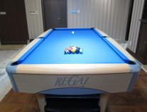 尊爵台球桌 九球台RG-T88 09年款