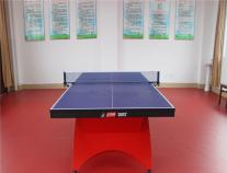 乒乓球台 红双喜彩虹乒乓球台TCH大彩虹乒乓球台