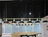 斯诺克台球灯桌球吊灯台球室厅黑八斯诺克台球桌专用台球