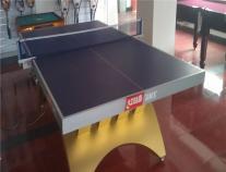 乒乓球台红双喜金彩虹乒乓球桌配LED灯管金彩虹乒乓球台